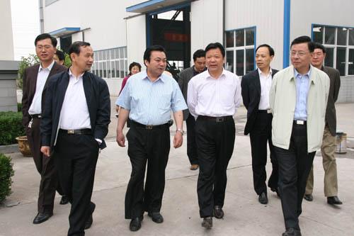安徽省统计局副局长王维祥来我公司调研